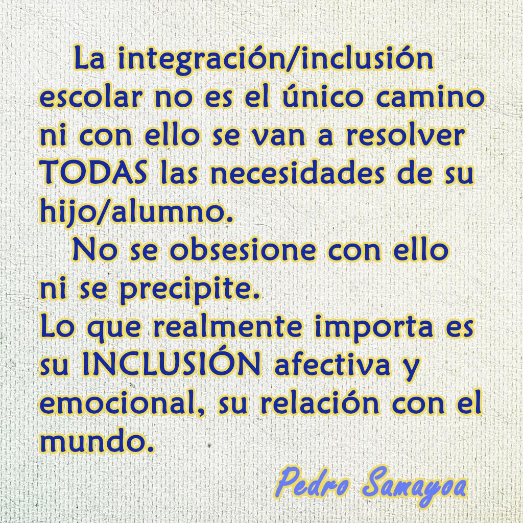la integración e inclusión educativa no es el único camino.